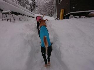あん雪 096.jpg