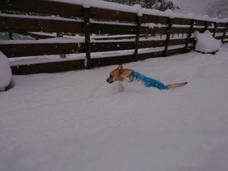 あん雪 138.jpg