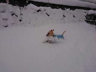 あん雪 155.jpg